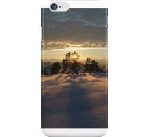 Winter Delight iPhone Case/Skin