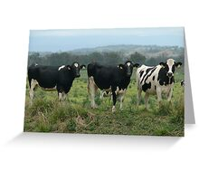 I think he is looking at us!  Greeting Card