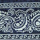 Blue & White Bandana Print by Betty  Town Duncan