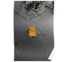 Autumn to Winter Poster