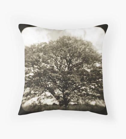 1856 Throw Pillow