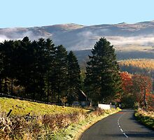 The Road to the Village - Autumn in the Scottish Borders by dsargent