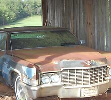 Dad`s Old Cadillac by Janet Ellen Lusk