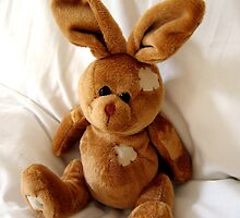 Cuddly toy rabbit by ljm000