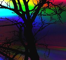 The Rainbow Tree by Sally Green