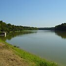 Preston's Ferry, White River Arkansas by WildestArt