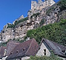 Chateau on the hill by hilarydougill