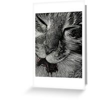 Cat Got Your Tongue Greeting Card