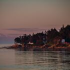 Mayne island and Mt.Baker at twilight by Eti Reid