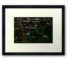 sprinkles of color Framed Print