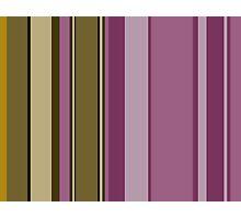 Chocolate and Raspberry Stripes 2 Photographic Print