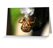 Bug Greeting Card
