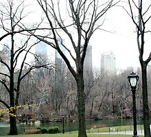 Central Park by abfabphoto