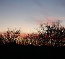 sunset by DreamCatcher/ Kyrah