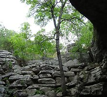Spelunking in Texas by kimbarose