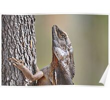 Lizard meets Tree. Poster