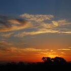 Sunset by sarahncraig