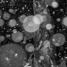 Spirit Bear in Snowstorm by Sue Smith
