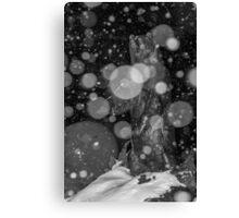 Spirit Bear in Snowstorm Canvas Print