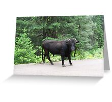 Highway 39 Greeting Card