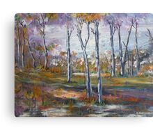 Out in the Sunshine Coast Bush, Australia Canvas Print