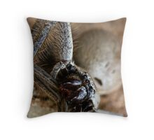 Not for the Arachnaphobic Throw Pillow