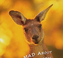 Kangaroo - MAD About Western Australia (Galaxy Case) by Dave Catley