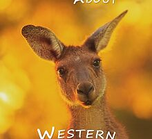 Kangaroo - MAD About Western Australia (iPhone Case) by Dave Catley
