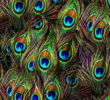 Peacock Feathers Invasion by BonniePhantasm