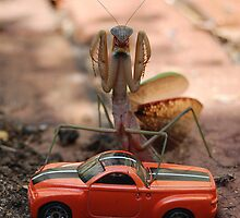 Monster Mantis Munches Metropolis! by Gayle Dolinger