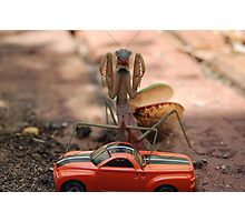 Monster Mantis Munches Metropolis! Photographic Print