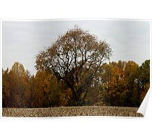 Surrounded by Autumn Poster