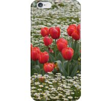 Tulips in a Field of Flowers - Canberra Floriade iPhone Case/Skin