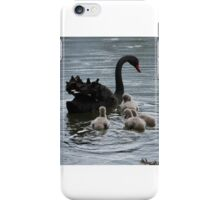 Following You - Black Swan and Goslings  iPhone Case/Skin