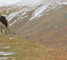 The Lone Walker - Helm Crag - Lake District by Rod Unwin