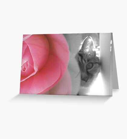 The purr and the petal Greeting Card