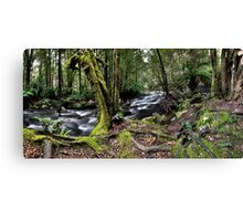 Meeting of the waters Panorama Canvas Print