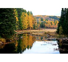 Opeongal Provincial Park Photographic Print