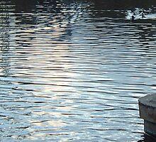 Lochend Pond.... by DoreenPhillips