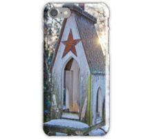Icy Birdhouse 2 iPhone Case/Skin