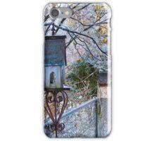 Frozen Birdhouses iPhone Case/Skin