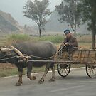 Rural China by Peter Gostelow