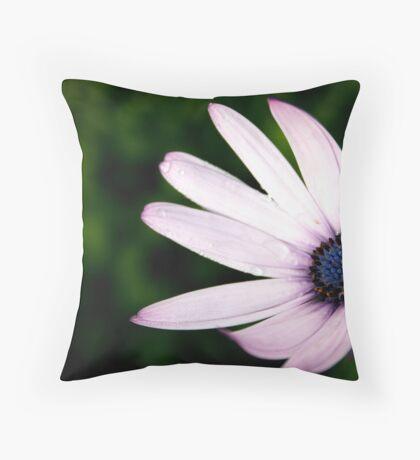 The African Daisy Throw Pillow