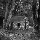 Rock House in the Woods by Mark Ramstead