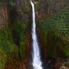 Catarata Del Toro Waterfall - Costa Rica by Jim Cumming