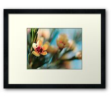 Softly blowing... Framed Print