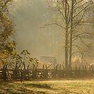 Golden Morn II by Gary L   Suddath