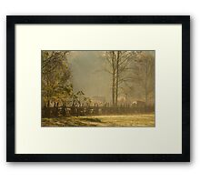 Golden Morn II Framed Print