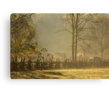 Golden Morn II Canvas Print