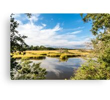 Green Marsh Grasses Under Blue Sky Canvas Print